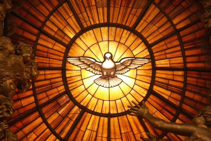 16th Sunday in Ordinary Time - Year A - 23 July 2017 - Holy Spirit Parish, Te Wairua Tapu
