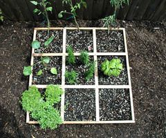 Best 25+ Small Vegetable Gardens Ideas On Pinterest | Raised Vegetable  Gardens, Raised Bed And Small Garden Plans