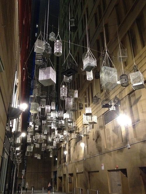 Laneway - Bird Cage