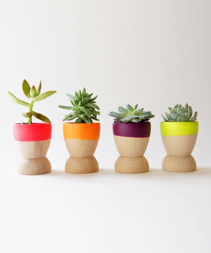Egg cups or mini terracotta pots dipped in bright paints. Perfect little succulent planters