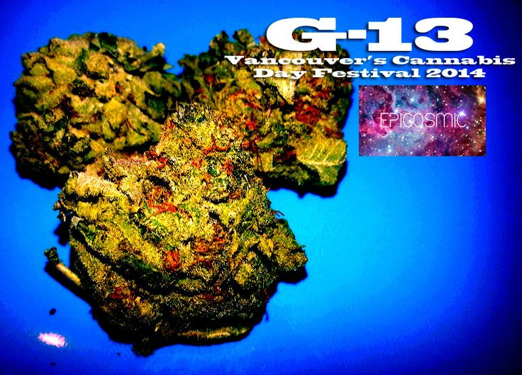 G-13 [Photography by EpiCosmic]