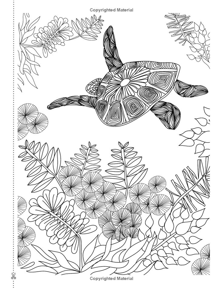 130 Best Adult Coloring Pages Images On Pinterest
