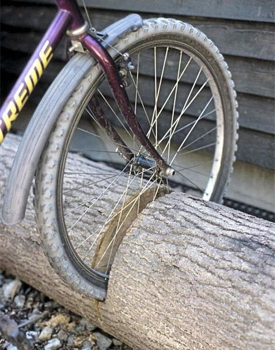 Repurpose a fallen tree into the ultimate bike stand! -- also like the old tire bike stand idea, might not rot as fast in Seattle weather either... Have to see what I can both find and fit in
