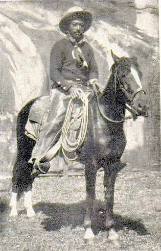 "Bill Pickett (about 1920) was a legendary cowboy from Taylor, Texas of black and Indian descent. Born in the Jenks-Branch community on the Travis County line, he died in 1932, near Ponca City, Oklahoma. Pickett performed from 1905 to 1931 for the Miller brother's 101 Ranch Wild West Show, one of the great shows in the tradition begun by William F. ""Buffalo Bill"" Cody in 1883. The 101 Ranch Show introduced bulldogging (steer wrestling), an exciting rodeo event invented by Bill Pickett."