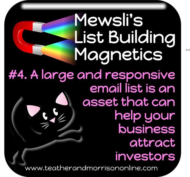 Mewsli is the office cat at www.teatherandmorrisononline.com - pop in and meet the rest of the team! #Mewsli #Marketing #Entrepreneur #Business #Investors