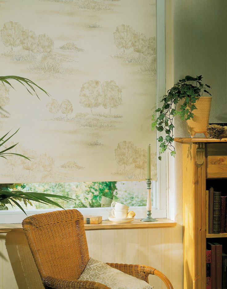 An elegant window blind print from Apollo Blinds