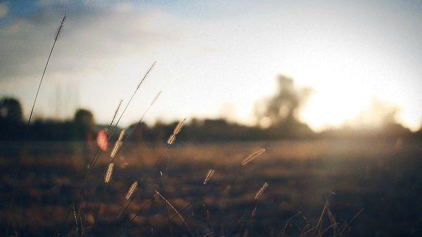 A Intensidade Encantadora de Fotos em Movimento | Design e fotografia - TudoPorEmail