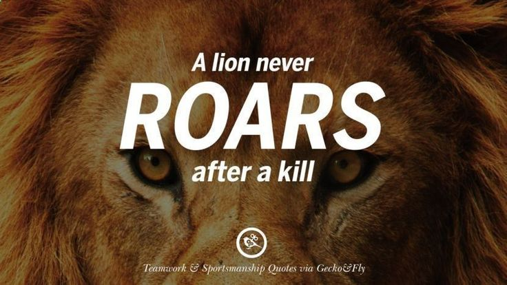 A lion never roars after a kill. Quotes Sportsmanship Teamwork Sports Soccer Fifa Football Cricket NBA Basketball Hockey Tennis Volleyball Table Tennis Baseball Rugby American Football Golf facebook twitter pinterest team work sports saying live online olympics games teamwork quotes inspirational motivational #teamworkmotivation #basketballquotes #tennisinspiration #tennismotivation #tennisquotes