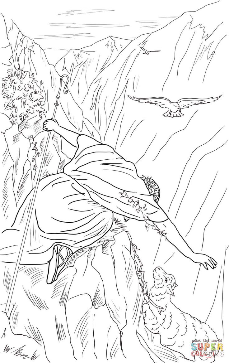 540 best Bible New Testament colouring pages images on