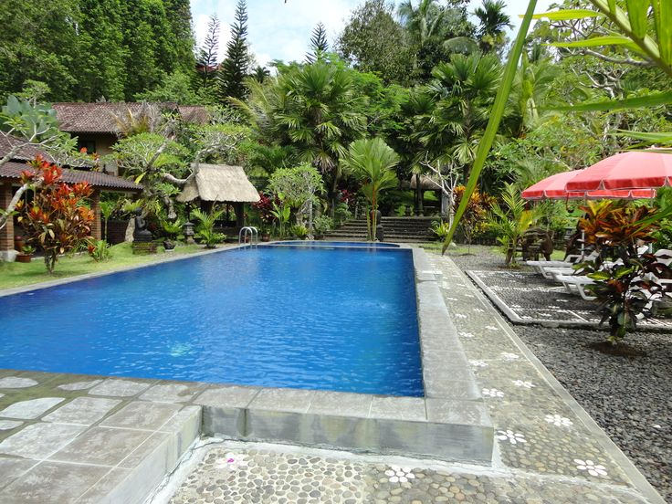 And here it is a fabulous pool in the garden and rice fields