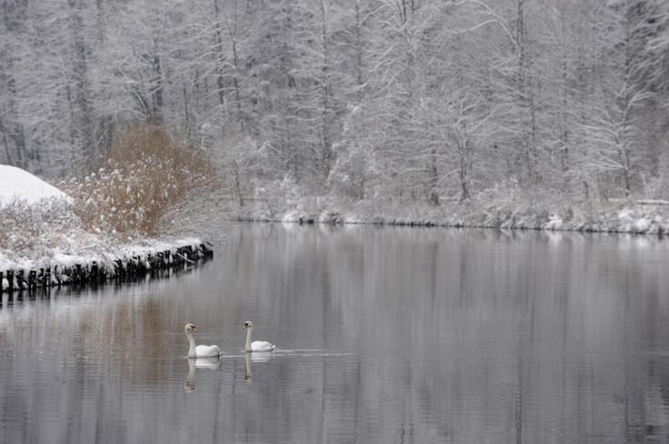 Winter at the Isar
