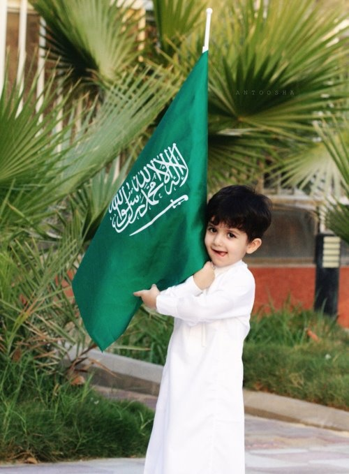 the saudi arabian flag