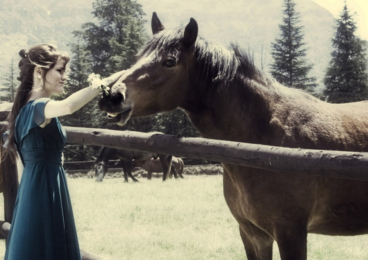 The perfect moment of understanding between girl and horse.