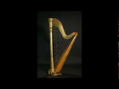 The Concerto for Flute, Harp, and Orchestra in C major, K. 299 is a piece by Wolfgang Amadeus Mozart for flute, harp, and orchestra. It is one of only two true double concertos that he wrote, as well as the only piece of music that Mozart wrote that contains the harp.