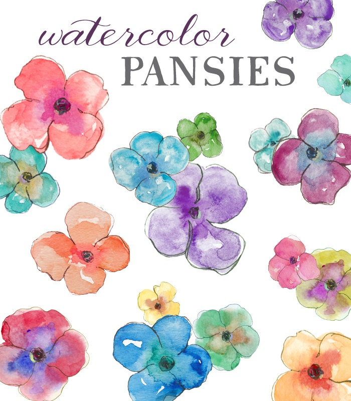Watercolor Pansies - Clip Art.