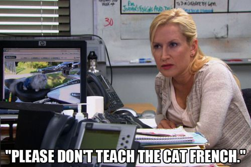 """Please don't teach the cat French."" - Angela Kinsey #TheOffice"