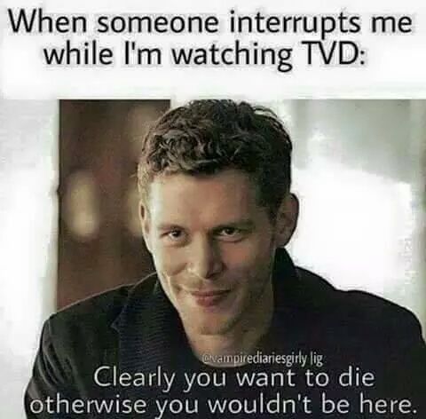 Image de tvd, klaus, and the vampire diaries