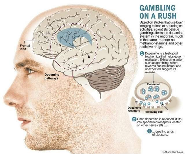 Gambling psychology addiction