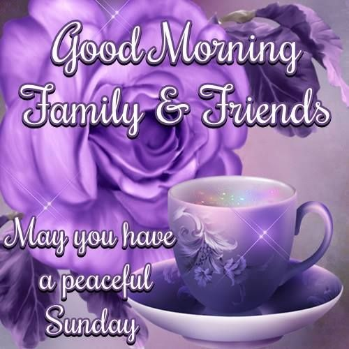 Good Morning Sunday Pick : Good morning may you have a peaceful sunday