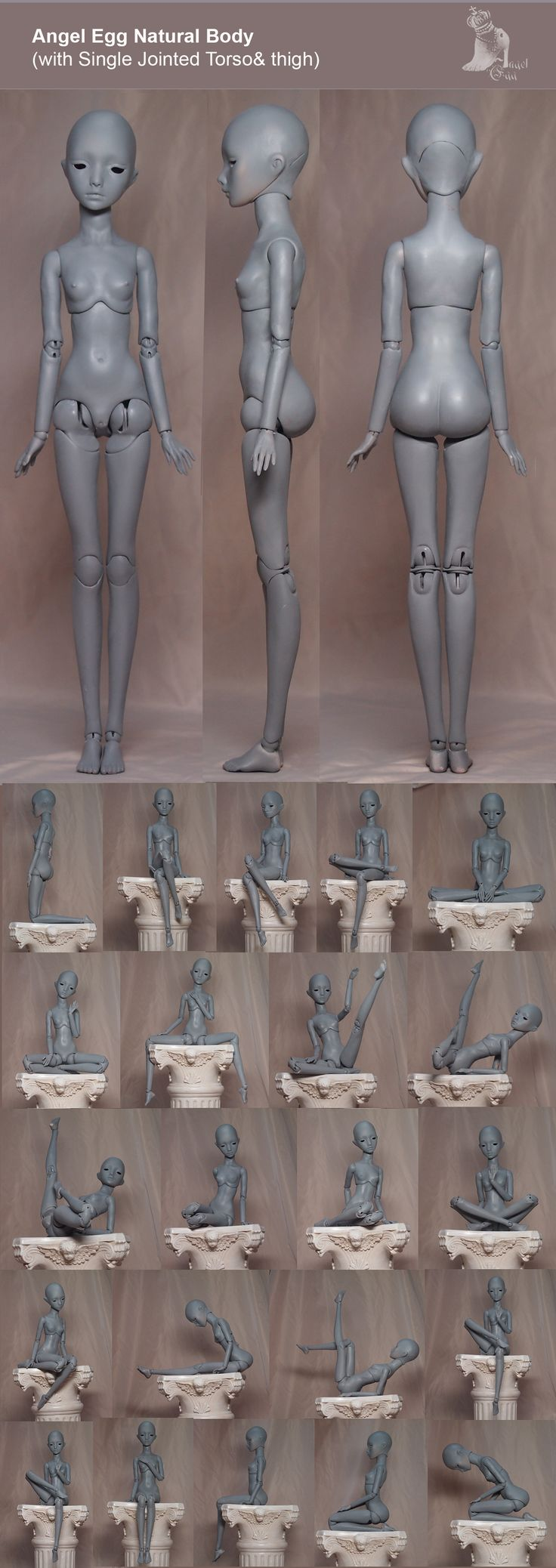 single-joint-Natural-Body.jpg (1500×4232)