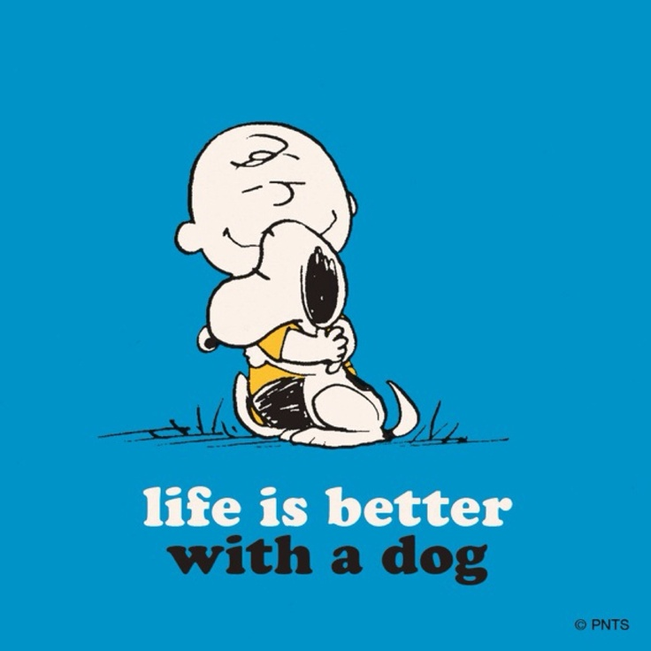 Charlie Brown Quotes About Life: Charlie Brown And His Dog.