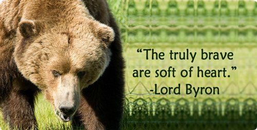 Symbolic Bear Meaning- Bear is my Totem