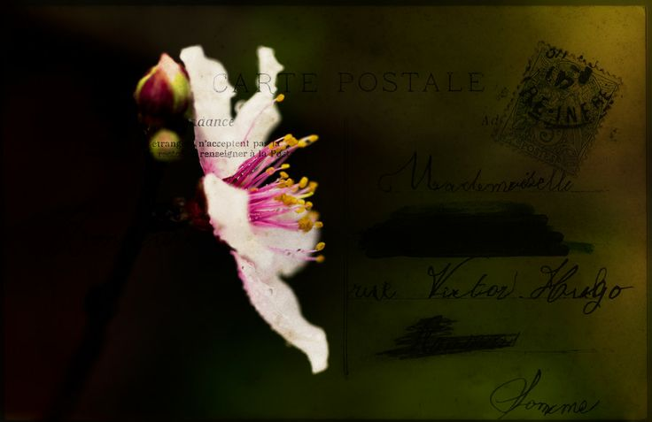 Send Me a Postcard by Marina Pierre on 500px
