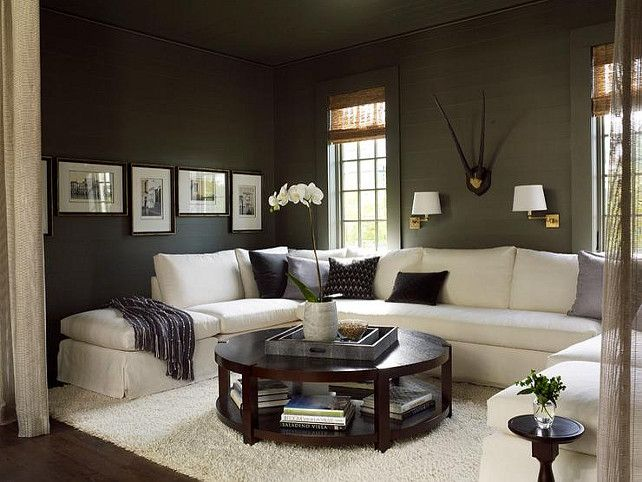 Porpoise Sw 7047 Sherwin Williams Charcoal Paint Color