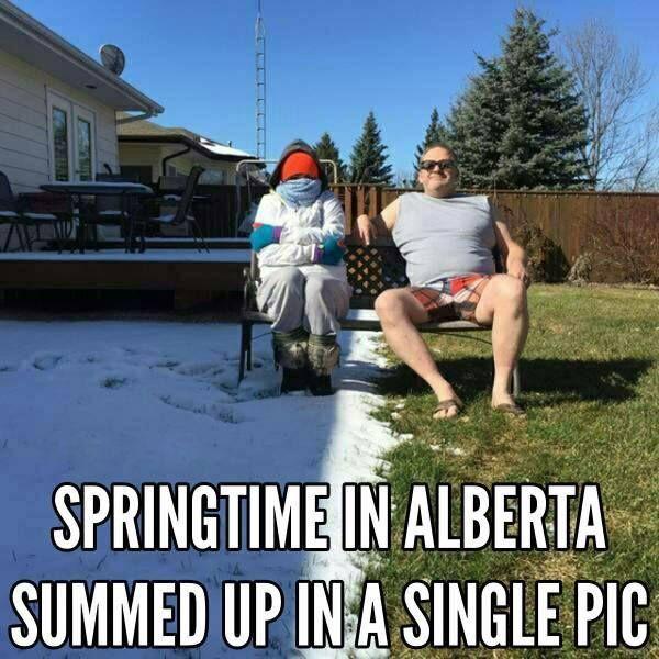 Image result for canadian memes