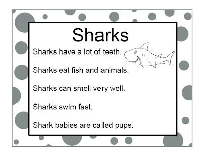 preschool shark song 25 best ideas about shark facts on species of 651