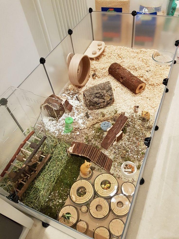 hamster cage hamster cage diy