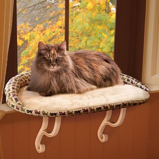 K&H Deluxe Tan Kitty Print Kitty Sill - but I think that I can have this…