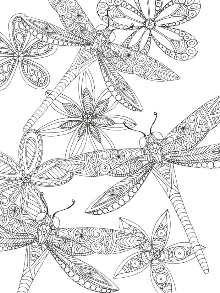Dragon Flies By Lizzie Preston Adult Colouring