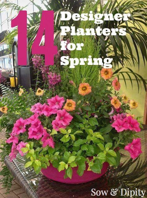 14 Designer Planters For Spring