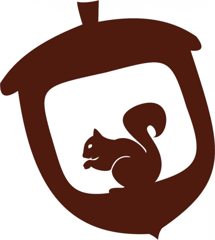 ~Eekhoorn in eikeltje via strijkapplicaties.nl~