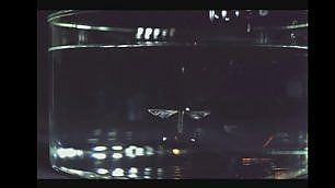 Il robot-insetto spione  volae nuota sott'acqua