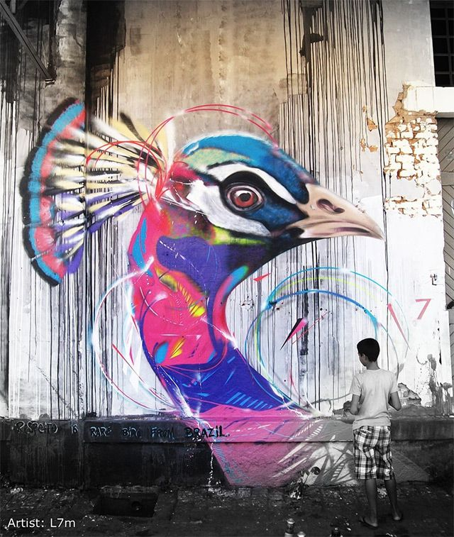 Bird Street Art on the Streets of Brazil by L7m | Colossal