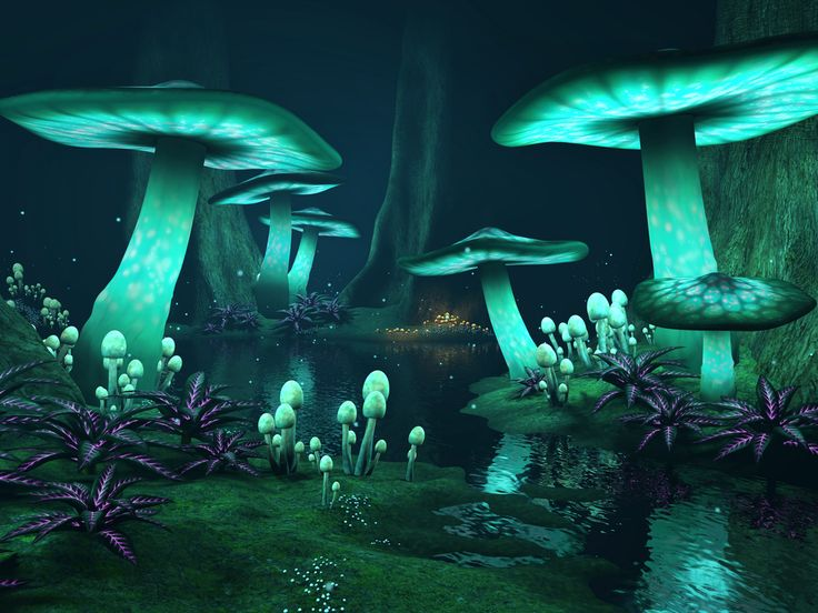 Fantasy dark forest with green glowing mushrooms