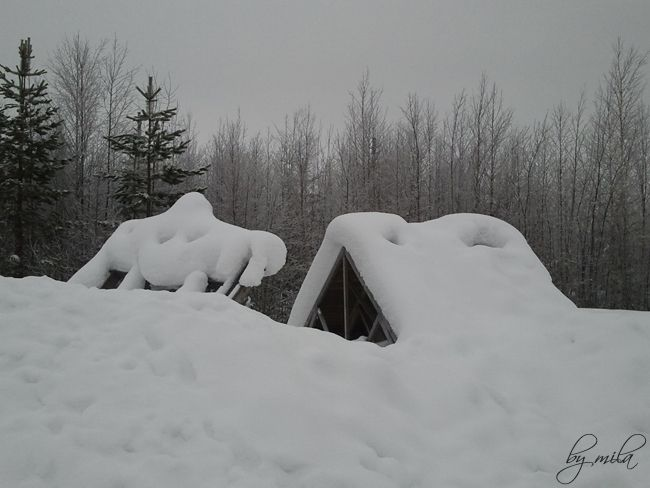 Rovaniemi - Lapland