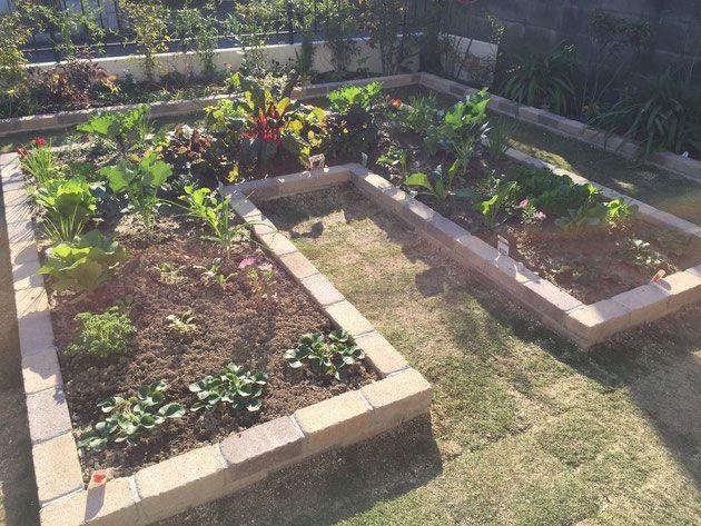 キッチンガーデン お客様のお庭が素敵なポタジェに おうちで野菜や