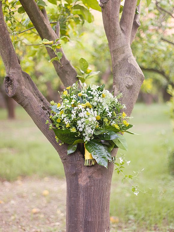 94 Best Flowers Images On Pinterest | Marriage, Flowers And Wedding Stuff