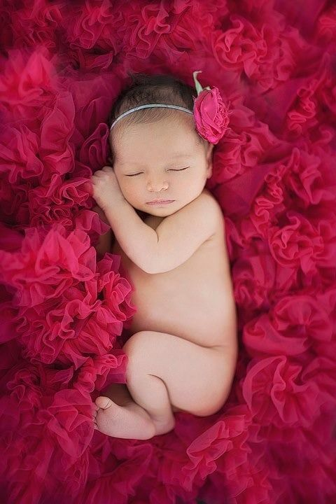 Newborn photography baby girl in a bed of red tulle