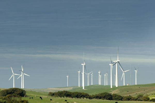 #Wind farm in Codrington, Victoria  #renewable #energy