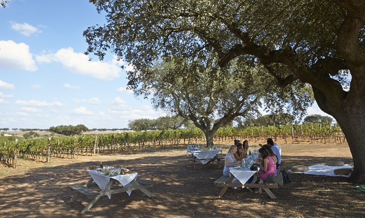 48-Hours in Portugal: The Ultimate Foodie Road Trip - via About Time Magazine Mar. 2015   If you can bring yourself to visit for only two days, there is no finer place to visit on a short weekend break than Portugal. For me, Portugal has it all; fantastic wine, great local food, sunshine and a sunny disposition to the people that make it an absolute pleasure to visit. Such variety in so few kilometres, it's truly astounding. If you're looking for an awesome road trip, here's how to do it…