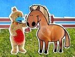 liedje paard