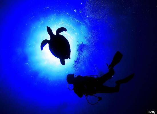 The Most Stunning Scuba Diving Moments - Turkey