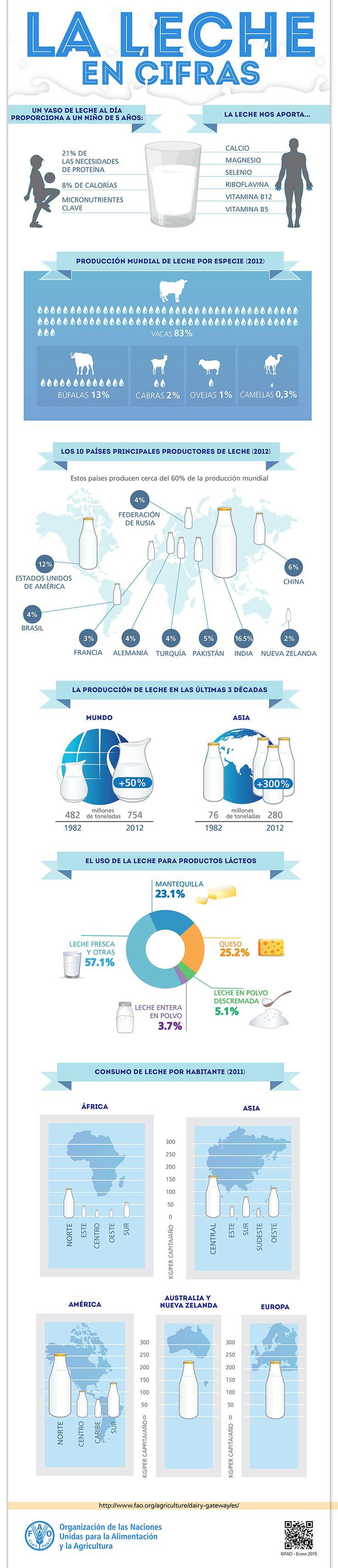 CEIEG » FAO – La leche en cifras.