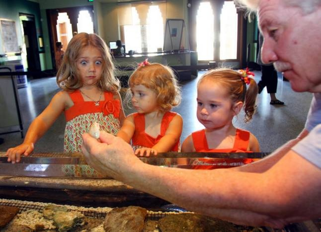 Hannah Towell (from left), 4, Leah Towell, 2, and Kaely Smith, 2, register varying degrees of fascination at a Dallas aquarium.
