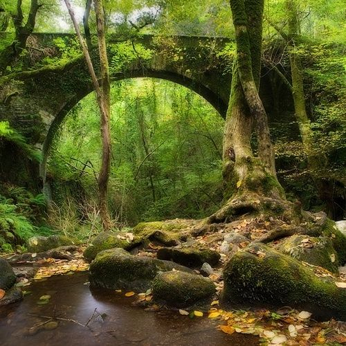 Eume River Bridge, Galicia, Spain