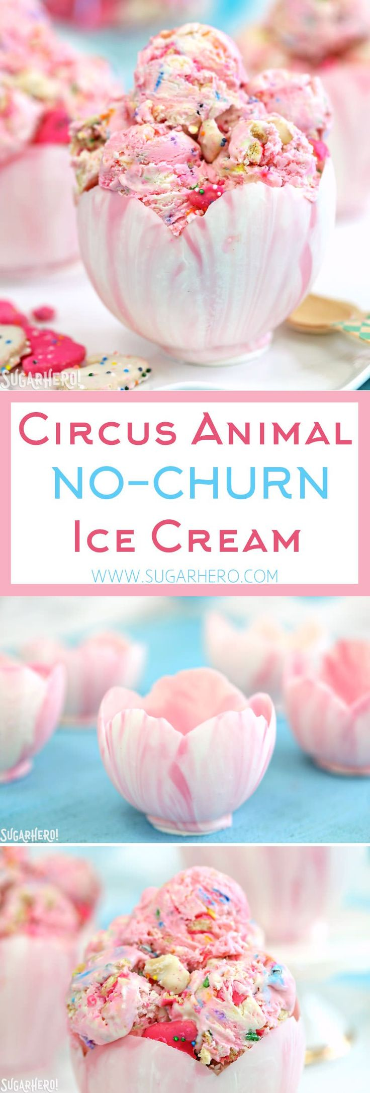 Circus Animal No-Churn Ice Cream - pink and white swirled ice cream with circus animal cookies and sprinkles! PLUS edible white chocolate bowls! | From SugarHero.com